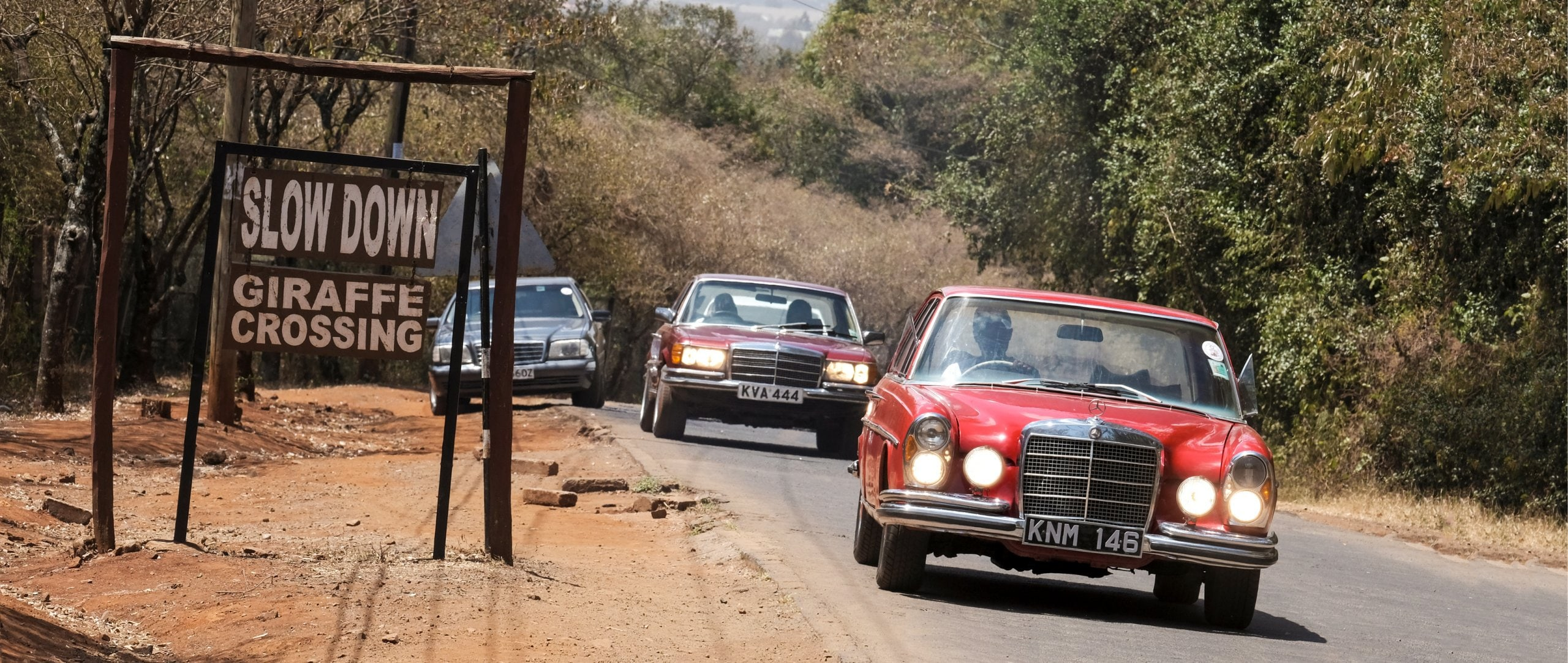 Two times S: a W 108 followed by Hermann Mike's W 116 on the way to the giraffe farm.