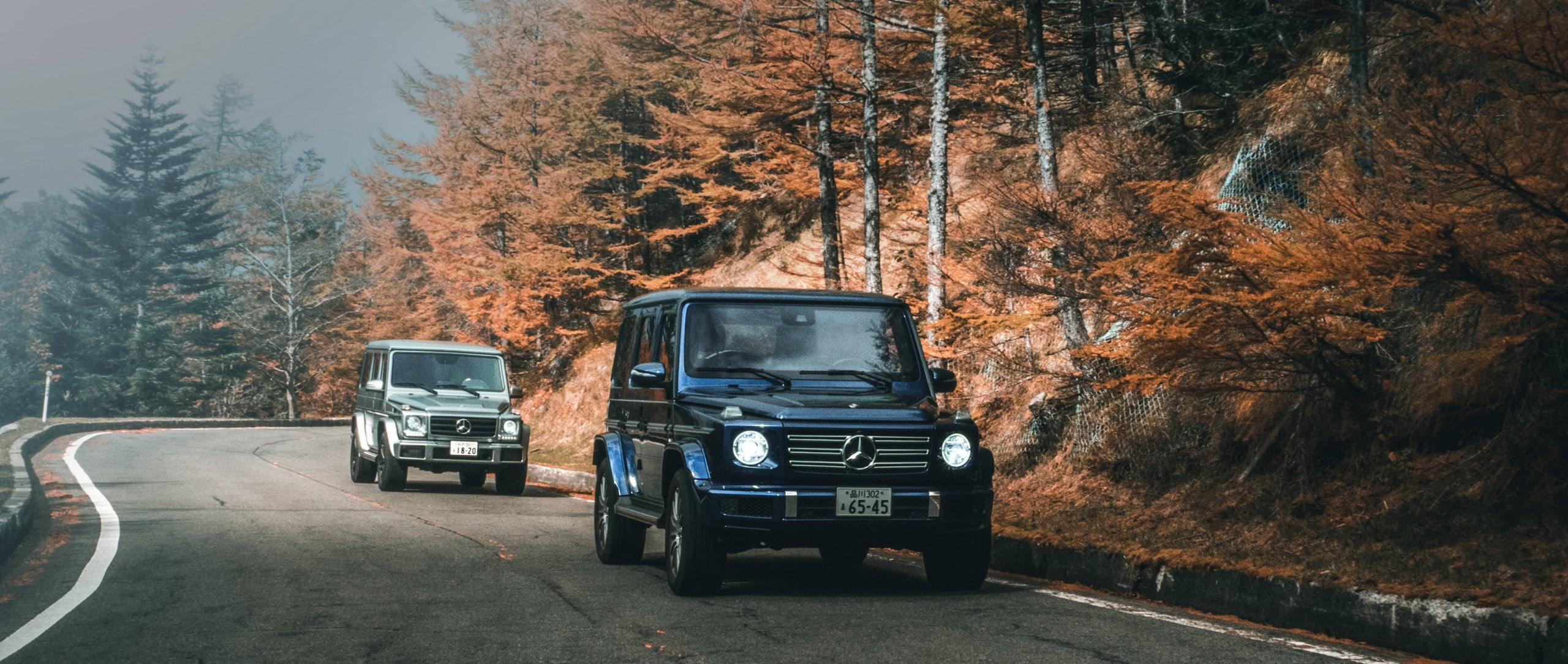 The Mercedes-Benz G-Classes (W 463) in brilliant blue and selenite grey drive one after the other along a road that leads along a forest, in the background trees can be seen.